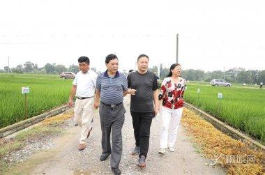 安农大农学院与桐城共建富锌农业产业基地